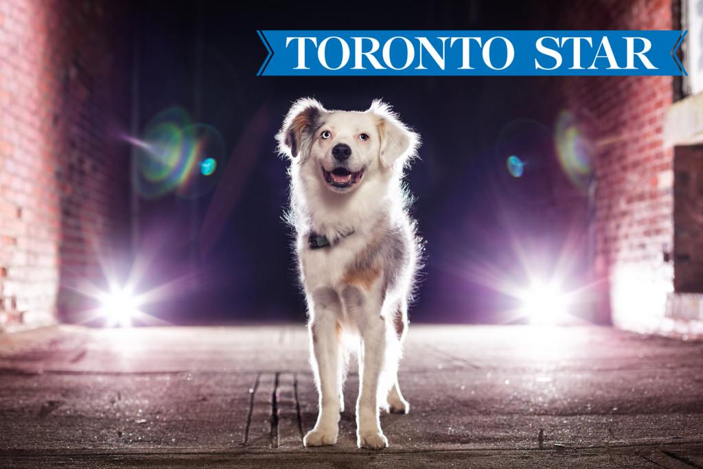 Pet Tech Toronto Star